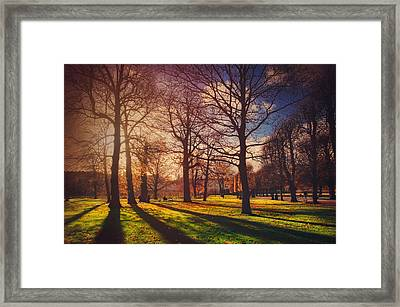 A Walk In The Park Framed Print by Carol Japp