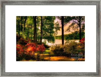 A Walk In The Park Framed Print by Lois Bryan