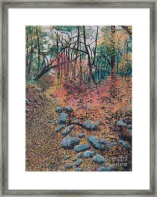A Walk In The Woods Framed Print by Lucinda  Hansen