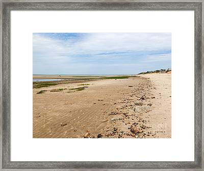A Walk On The Beach Framed Print
