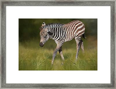 A Walk On The Wild Side Framed Print by Donna Kennedy