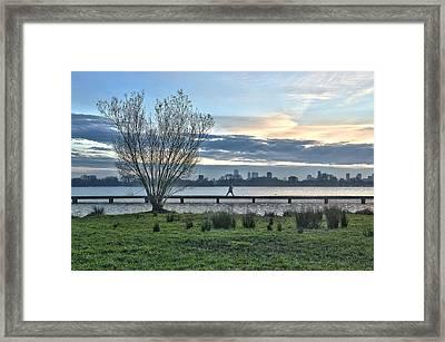 A Walk Through The Lake Framed Print