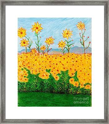 A Walk Through The Sunflowers  Framed Print