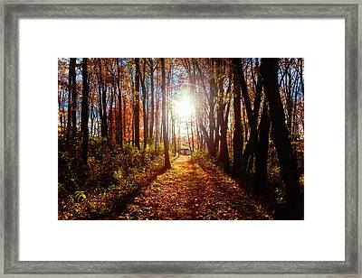 A Walk To Grandma's Framed Print by April Reppucci