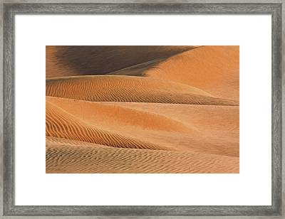 A Walk To Take II Framed Print