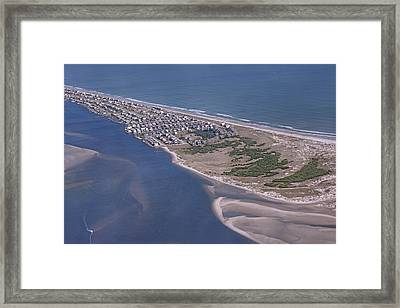 A Walking Paradise Framed Print by Betsy Knapp