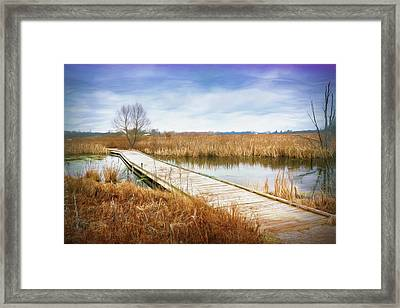 A Warm Day In February Framed Print