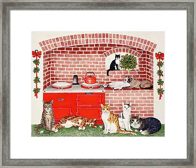 A Warm Place Framed Print by Pat Scott