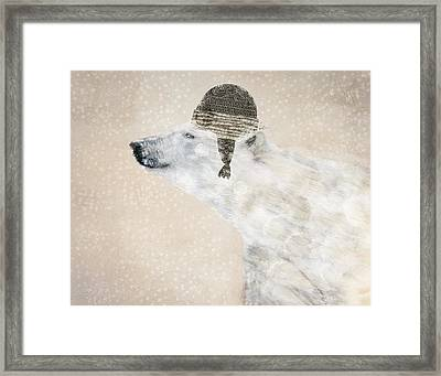 A Warm Polar Bear Framed Print by Bri B