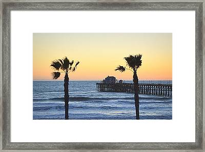 Framed Print featuring the photograph A Warmer Place To Be by AJ Schibig