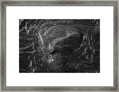 A Watcher In The Water Framed Print by Robert Ullmann