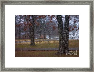 A Watery View Framed Print