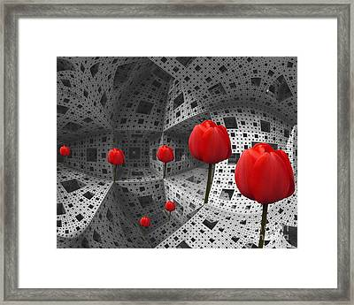 a way in Menger's sponge Framed Print