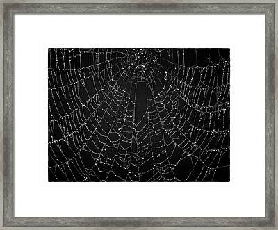 A Web Of Silver Pearls Framed Print