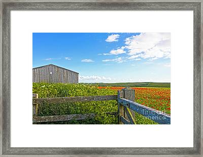 A West Pentire Farm Framed Print by Terri Waters