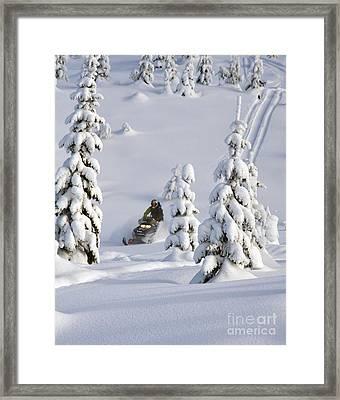 A Whole New Snowy World Framed Print by Ryan Djakovic