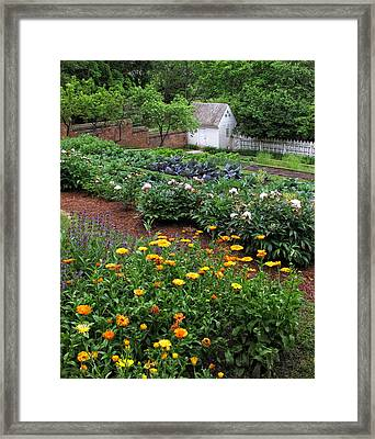 A Williamsburg Garden Framed Print