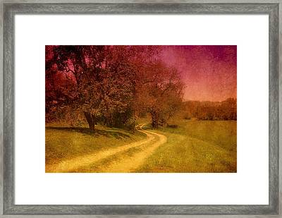 A Winding Road - Bayonet Farm Framed Print by Angie Tirado