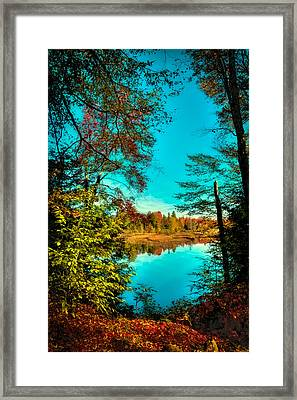 A Window Into Autumn Framed Print by David Patterson