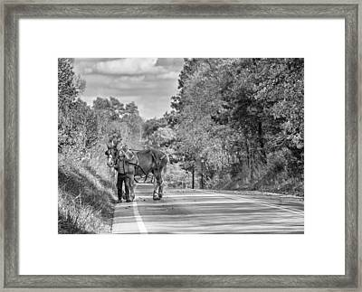 A Windy Day Bw Framed Print