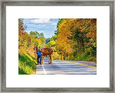 A Windy Day Framed Print
