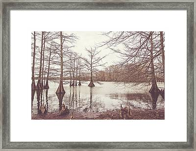 A Winter Afternoon On Lake Providence Framed Print