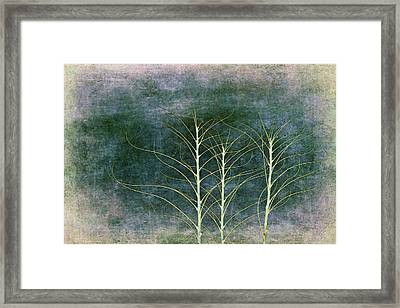 A Winter Dance Framed Print