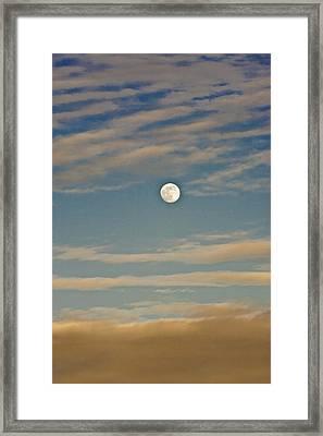 A Winter Moon Framed Print