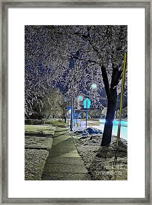 A Winter Walk In Ice Splendor Framed Print by Daniel J Ruggiero