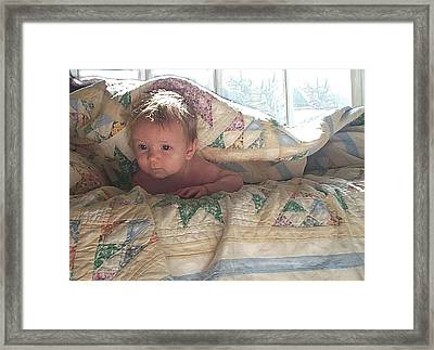 A Winter's Day Framed Print by Jane Schnetlage