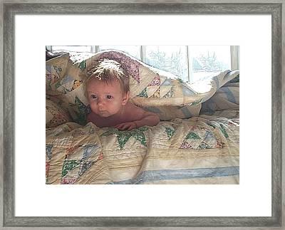 A Winter's Day Framed Print by Jane Schnetlage