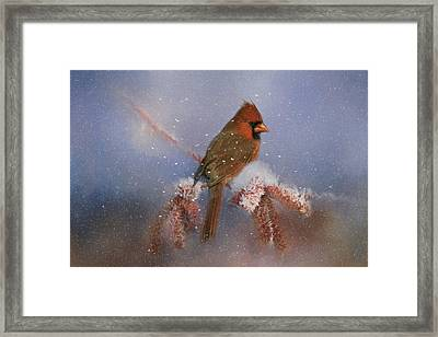 A Winters Day Framed Print by Lana Trussell