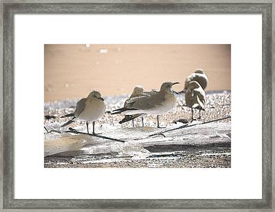 A Winter's Day Passing Bye Framed Print