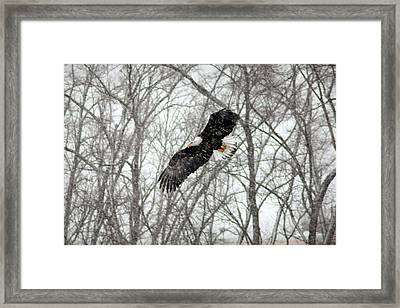 Framed Print featuring the photograph A Winter's Day by Viviana  Nadowski