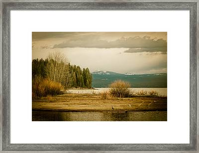 A Winter's Idyll Framed Print by Jan Davies