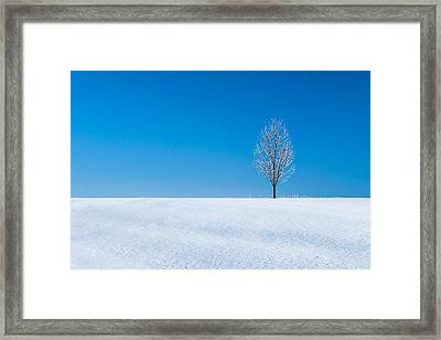 A Winter's Landmark Framed Print by Todd Klassy