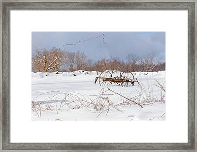 A Winters Morning 2016 Framed Print
