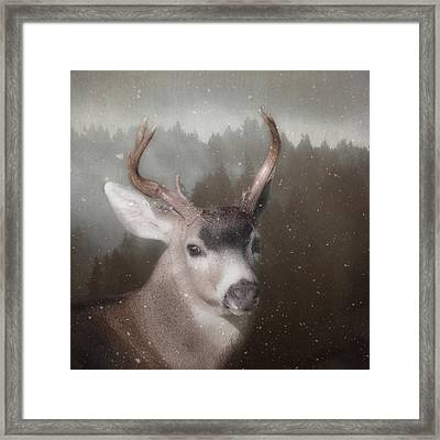 A Winter's Night Framed Print