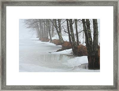A Winter's Scene Framed Print by Karol Livote