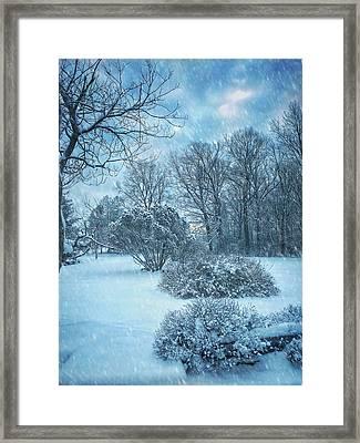 A Winters Tale Framed Print