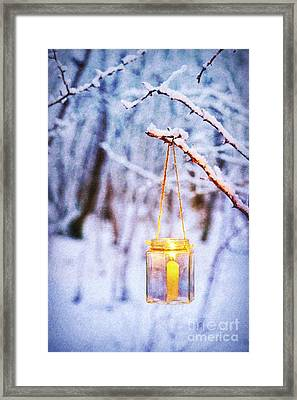 A Winters Tale Framed Print by Tim Gainey