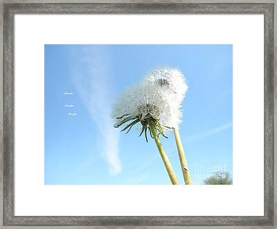 A Wish Blown Off To The Maker Framed Print