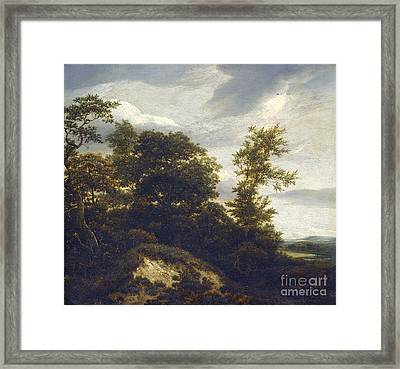 A Wooded Dune Landscape Framed Print by Celestial Images