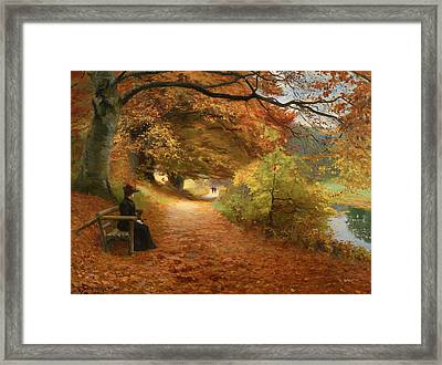 A Wooded Path In Autumn Framed Print by Mountain Dreams