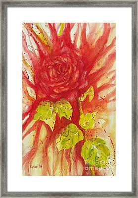 A Wounded Rose Framed Print