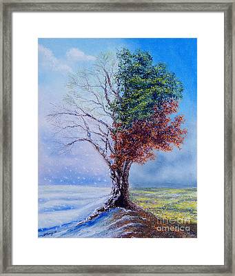 A Year In The Tree Of Life Framed Print by Stanza Widen