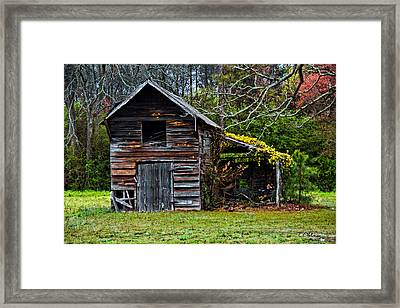 A Yellow Cover Framed Print by Christopher Holmes