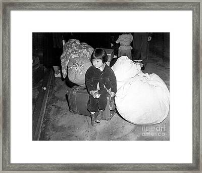 A Young Evacuee Of Japanese Ancestry Framed Print