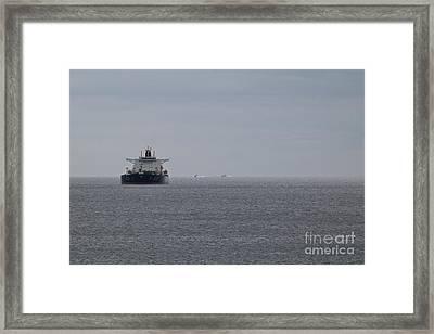 A11 Framed Print by Terri Waters