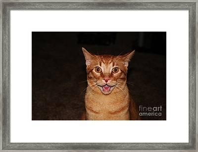 Aaaaaahhhhhhhhhh Framed Print